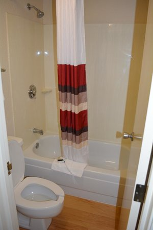 Red Roof Inn Cleveland - Westlake : Bathroom