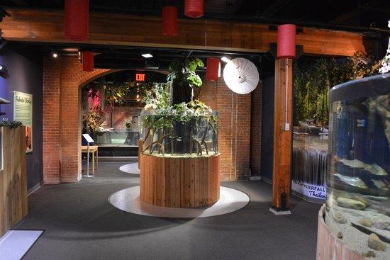 Greater Cleveland Aquarium: Some exhibits