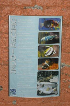 Greater Cleveland Aquarium: Signs