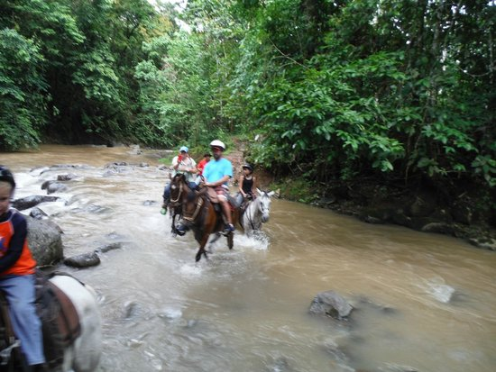 Leaves and Lizards Arenal Volcano Cabin Retreat: horseback ride to the waterfall