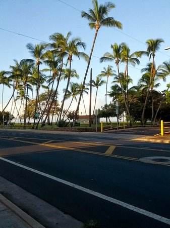 Island Surf Condominiums: Street view walking to get coffee