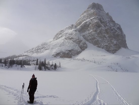 Assiniboine Lodge: Snow shoeing