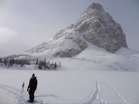 Assiniboine Lodge: Snow shoeing