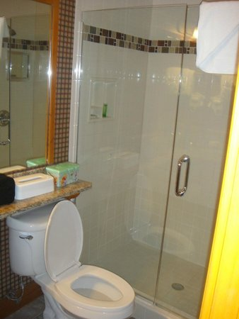 Westgate Smoky Mountain Resort & Spa: Bathroom