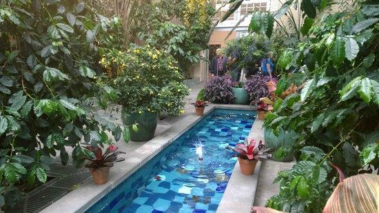 United States Botanic Garden: Garden Court