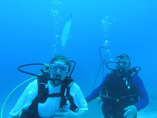 Ocean Explorers Dive Center : The barracuda loved following me :)