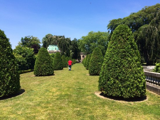 The Elms: Gardens