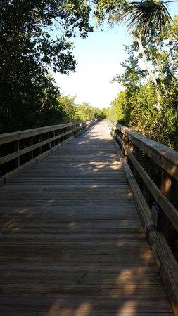 Hyatt Regency Coconut Point Resort and Spa: Bridge over to the dock