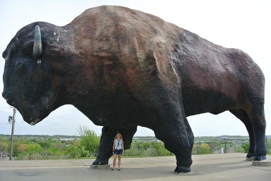 Frontier Village : world's largest buffalo monument