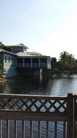 Hyatt Regency Coconut Point Resort & Spa: Just a spot on the grounds