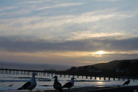 Cayucos Shoreline Inn...on the beach: Cloudy sunset