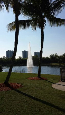 Hyatt Regency Coconut Point Resort and Spa: Fountains for the allegator