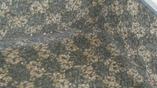 Days Inn Frankfort : Gross filth along carpet edges
