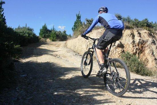 Otaki, Nouvelle-Zélande : Mountain biking - Mt Thompson