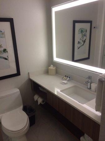 Hilton Garden Inn New York/Central Park South-Midtown West: Bathroom