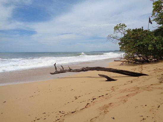 Playa Bluff: Bluff Beach