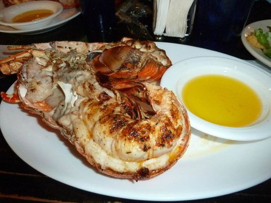 Prato do dia jambalaya lobster shrimp picture of for Garcia s seafood grille fish market miami fl
