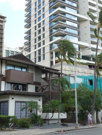 Trump International Hotel Waikiki : 手前が今日庵、その後ろがトランプインターナショナルホテル