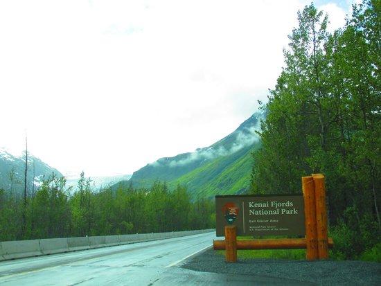 Kenai Fjords National Park : Exit Glacier