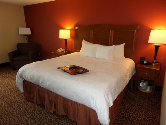 Hampton Inn Chicago-Carol Stream: Hotel room with King size bed