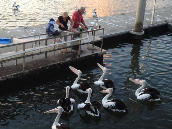 Calypso Holiday Park: Fish cleaning facilities and pontoon