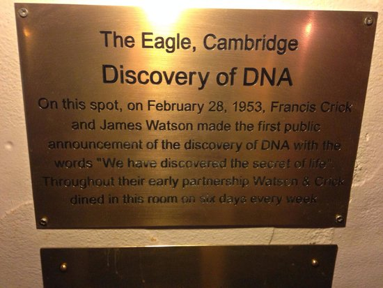 The Eagle: The plaque