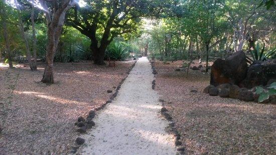 Club Med La Plantation d'Albion : chemin pieton