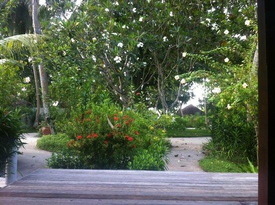 Kuramathi Island Resort: Вид из Beach Villa