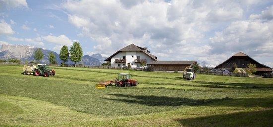 Renon, Italy: Fuhrpark