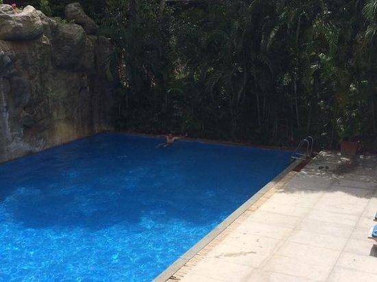 The Windflower Resort & Spa, Mysore: Swimming Pool