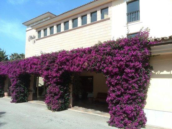 SENTIDO Mallorca Palace: Fachada y entrada del hotel