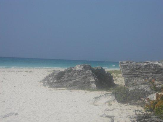 Sandos Playacar Beach Resort : 10 mins down the beach