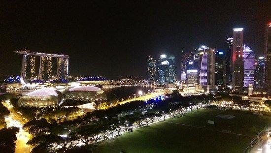 Swissotel The Stamford Singapore: 房間看出去的夜景
