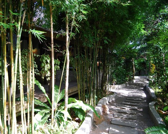 The Sundays Sanctuary Resort & Spa : Walkway