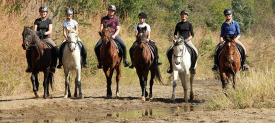 Pakamisa Private Game Reserve: A group of riders out on a safari