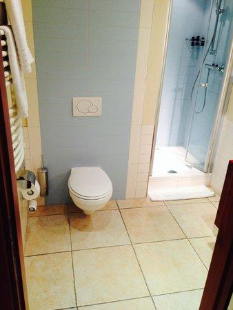 Best Western Plus Grand Hotel Victor Hugo : Bathroom 1 in superior room