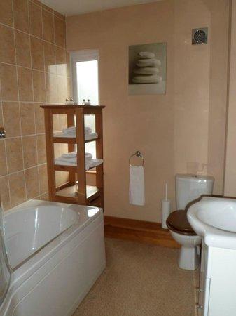 Ty Morgan's Bar-Bistro-Rooms: Caban Coch Bathroom