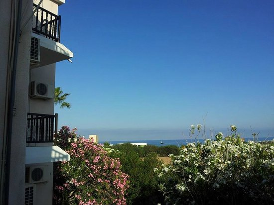 the pool picture of hilltop gardens hotel apartments paphos rh tripadvisor com