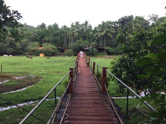 Hem Travels Day Tours: Spice plantation entry
