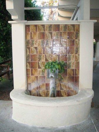 Rancho Bernardo Inn: One of Many Fountains