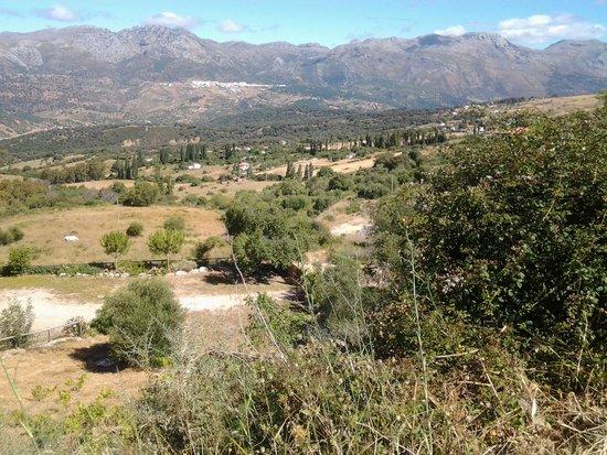 Hotel el Gecko : View of Cortes de la Frontera from Gaucin