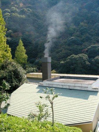 Okudogo Ichiyunomori: Jungle Spa