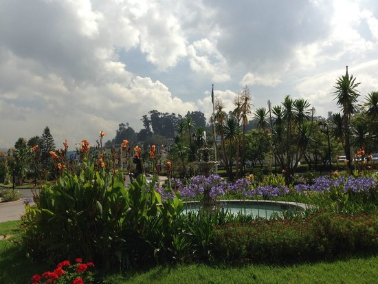 Sheraton Addis, a Luxury Collection Hotel: Front garden