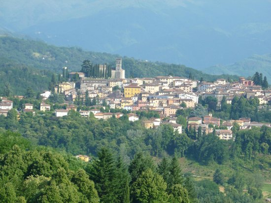 Renaissance Tuscany Il Ciocco Resort & Spa: View of Barga from our balcony (Executive Room View)