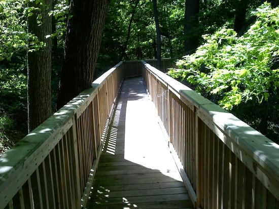 Holland, MI: Walkway to the woods