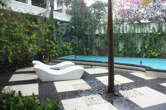 Casa Artista Bali: бассейн