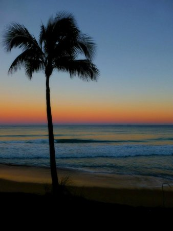 Pelican Grand Beach Resort, A Noble House Resort: Abendstimmung am Strand