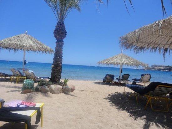 Hilton Sharm El Sheikh Fayrouz Resort : beach empty at  lunch time