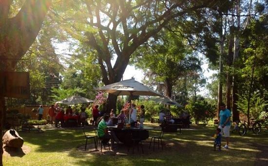 Cafe Mandala : garden seating