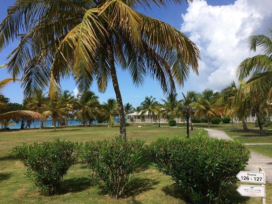 Anguilla Great House Beach Resort: hotel garden
